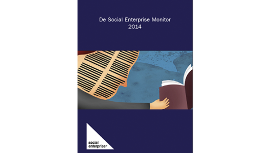 De social enterprise monitor 2014